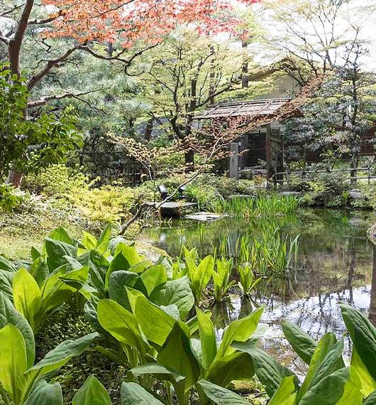 加賀藩ゆかりの庭園